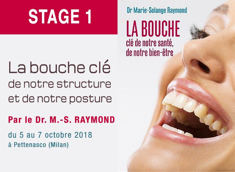 Formation dentiste stage 1 par le Dr Marie-Solange RAYMOND