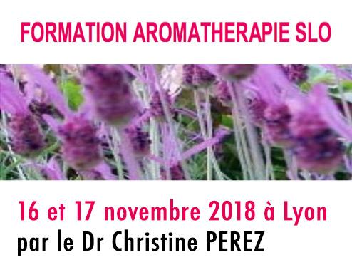 initiation à l'aromathérapie par . Applications thérapeutiques avec l'étude de 10 huiles essentielles utilisables en dentisterie le Dr PEREZ Christine